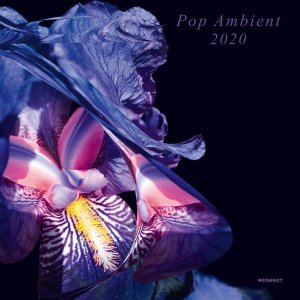 V/A - Pop Ambient 2020 - 2 x LP - Click Image to Close