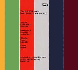 thomas brinkmann - what you hear (is what you hear)