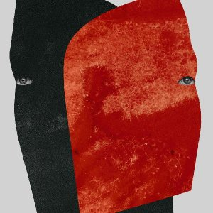 rival consoles - persona - 2 x clear LP