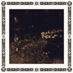 Sarah Davachi - Pale Bloom - LP