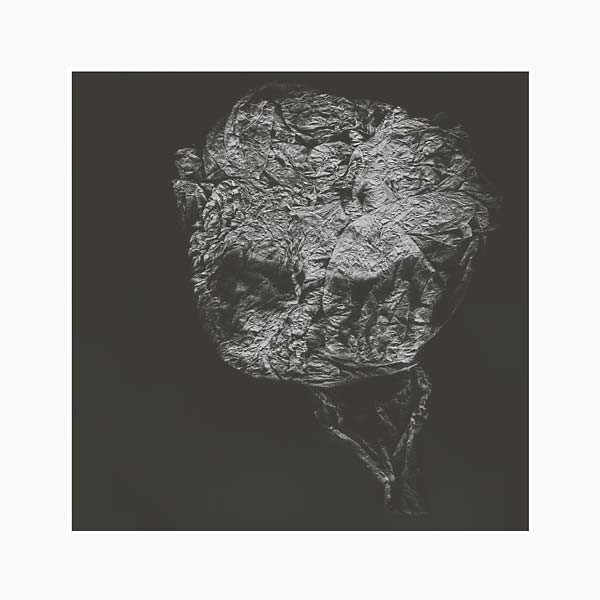 david toop - entities inertias faint beings lp