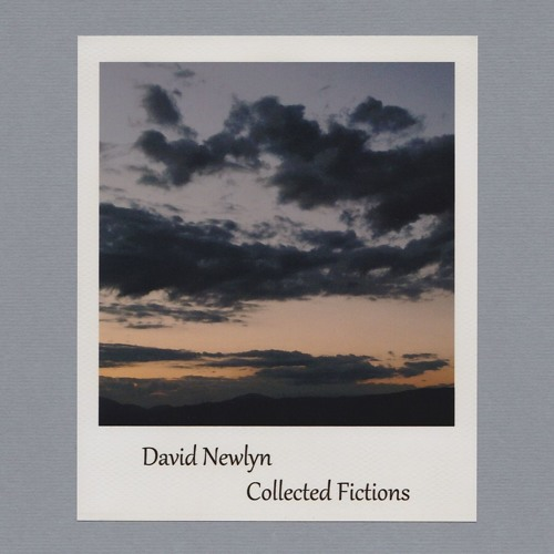 David Newlyn - Collected Fictions
